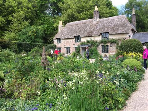 Hardy Cottage by Photo0 Jpg Picture Of Hardy S Cottage Dorchester