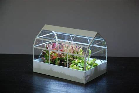 mini greenhouse  led grow lights