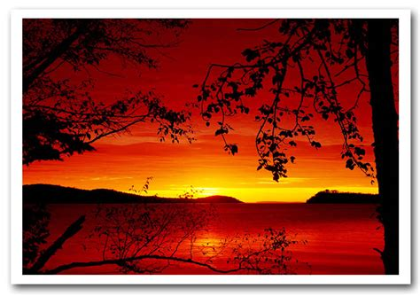 Landscape Posters River Through The Trees Landscape Framed Giclee