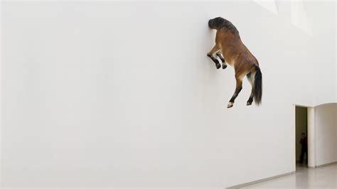 equestrian wallpaper for walls horse in wall wallpaper 1920x1080 25148