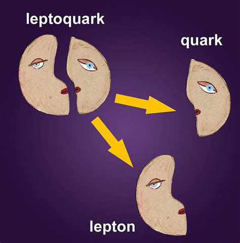 quarks leptons and the big second edition books exotics