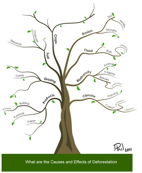 tree mapping software free mind map gallery imindmap