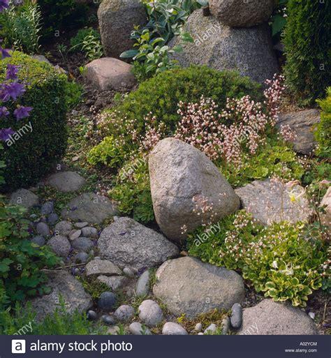 large boulders and pebbles in country rockery garden stock