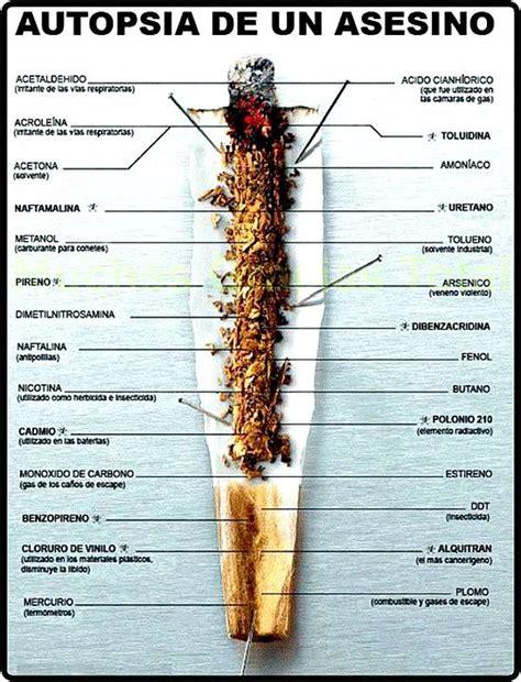 preguntas para hacer fumado forabg pregunta 26 lunes 1 de junio