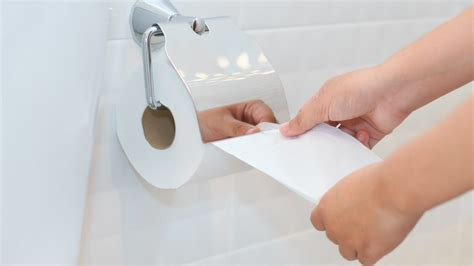 buy toilet paper  findercom