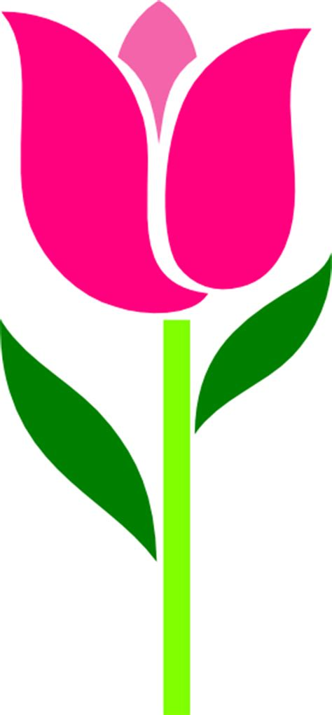 pink tulip leaves askew clip art  clkercom vector