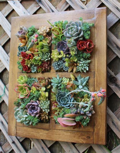 Succulent Frame My Farmscape - the world s catalog of ideas