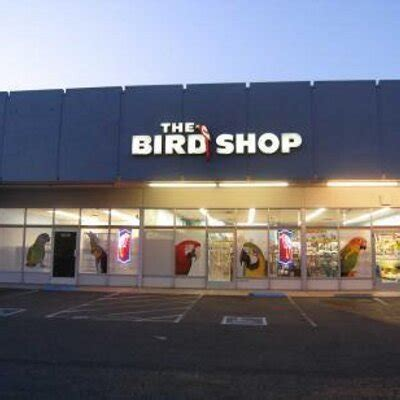 the bird shop thebirdshop twitter