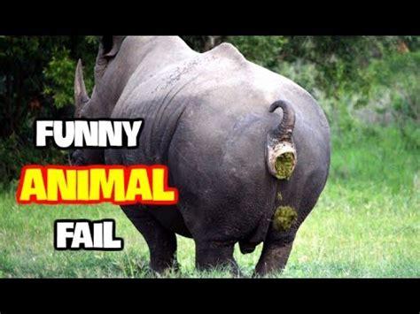 best fail best animals fails may 2017 part 3 best fails