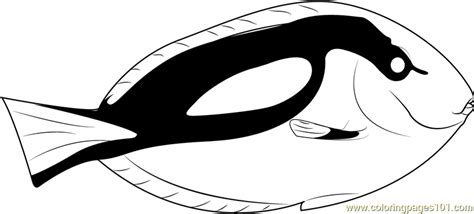 blue fish coloring pages blue tang fish coloring page free other fish coloring