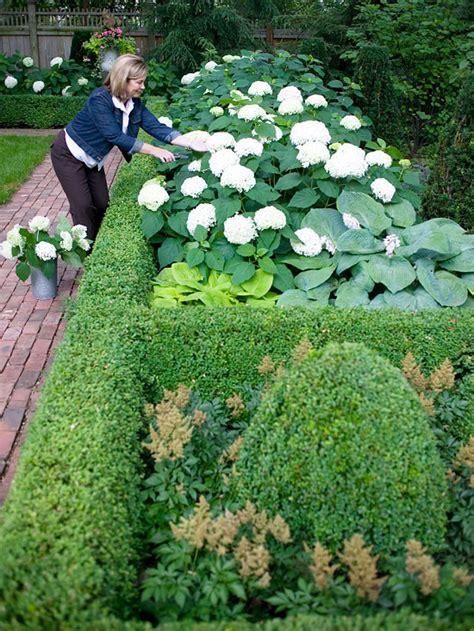 tipps zur gartengestaltung vorgartengestaltung mit hortensien sweetmenu info