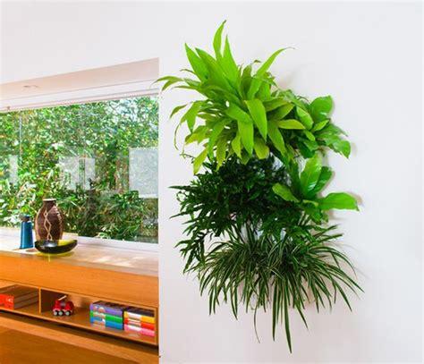 wall planter indoor woolly pocket indoor plastic pocket indoor wall plants