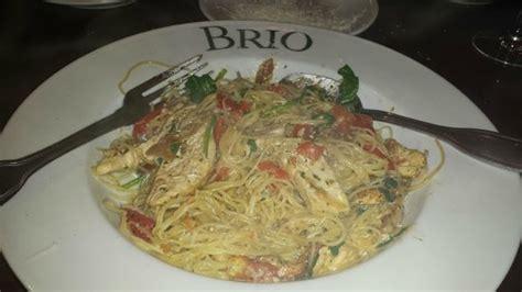 brio restaurant lawrenceville nj pasta pesto picture of brio tuscan grille lawrenceville
