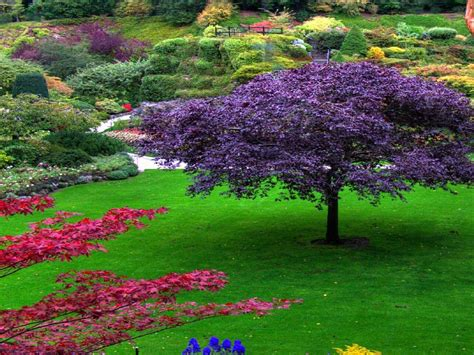 Pretty Flower Garden Beautiful Garden Wallpapers Wallpaper Cave