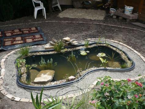 Sumpfzone Teich by Teich Bepflanzen 65 Ideen Archzine Net
