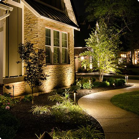 professional landscape lighting system earth and woods