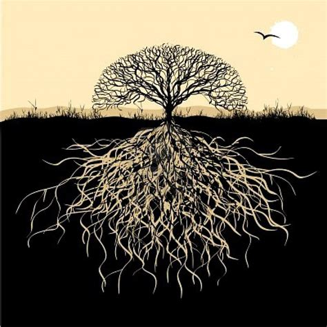 symbolism of trees roots of disordered eating run deep
