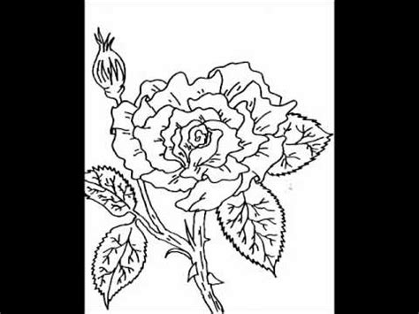 flower coloring pages youtube