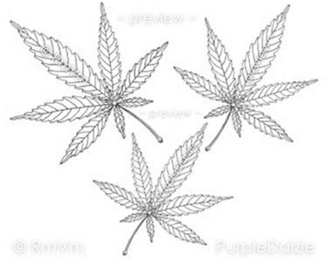 coloring page pot leaf adult coloring pages adult coloring and cannabis leaf on