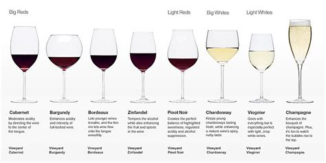 barware glasses types glassware drinks recipes