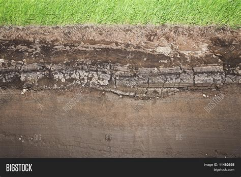 underground soil layers powerpoint template backgrounds real grass and several underground soil layers image