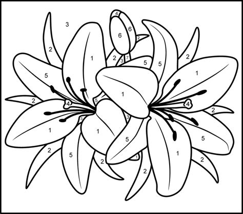 color by number flower coloring pages free printable paint by numbers for adults az coloring pages