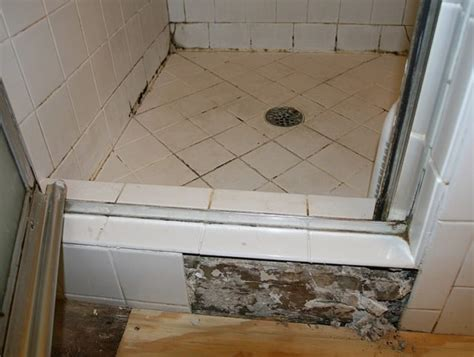 mold in bathroom health risk mold in bathroom health risk 28 images is black mold
