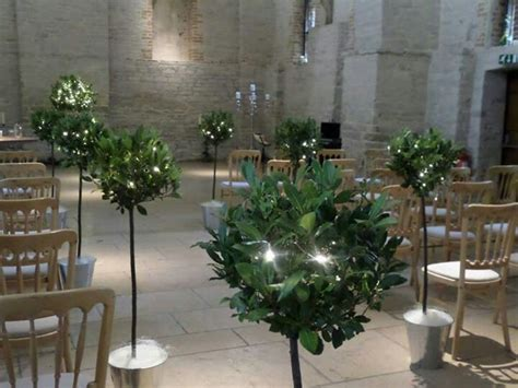 Wedding Aisle Trees by 10 Best Images About A Church Wedding Aisle On