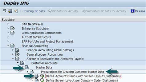 layout definition sap sap fi customer account group
