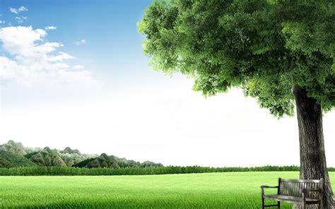 compartiendo fondos 70 paisajes en hd para fondos de compartiendo fondos paisajes naturales banco bajo el 193 rbol