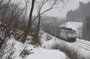 föhr amrumer bank nebel dichter nebel legte sich 252 ber den verschneiten wald bei