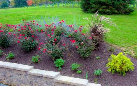 Front Garden Ideas With Gravel With Gravel Front Garden Design Photos And Tips For You