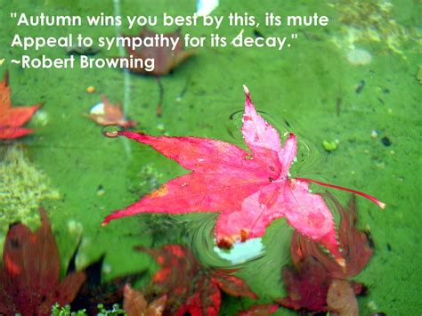 autumn quotes friendship quotes a large collection of famous and inspirational quotes