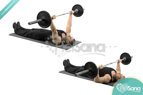 floor press vs bench press bench floor press 28 images fitnes us pro mac 20 ton
