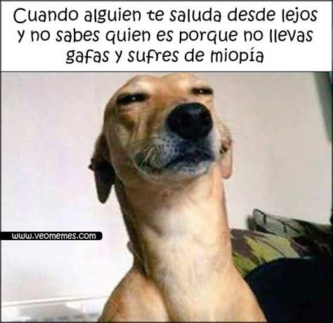 imagenes graciosos de aguinaldo im 225 genes de memes s 250 per graciosos el drama de los miopes