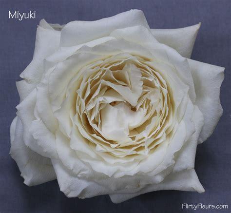 Lovely Days Miyuki Obayashi the white garden study with alexandra farms flirty fleurs the florist inspiration