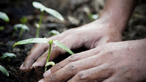 nachhaltige banken nachhaltige banken evidero