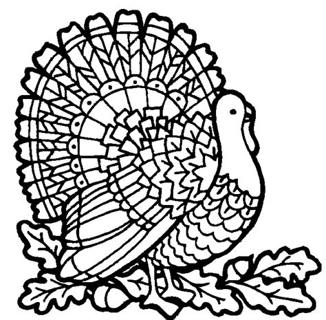 free coloring pages of a turkey thanksgiving coloring pictures