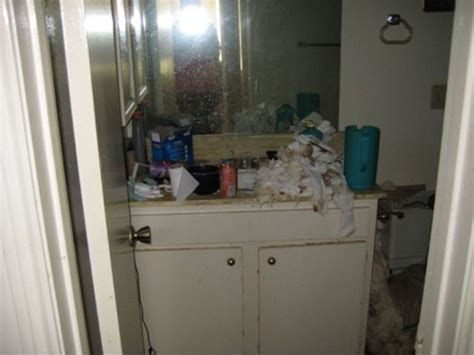 d flies bathroom i ll never feel bad about cleaning my house again