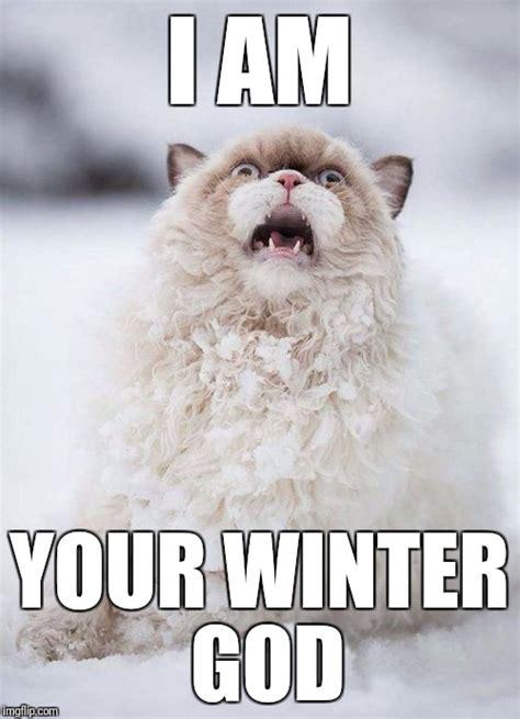 Winter Meme Generator - winter god cat imgflip
