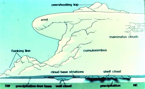 parts of a tornado diagram jason s weather center powerful supercell devastates