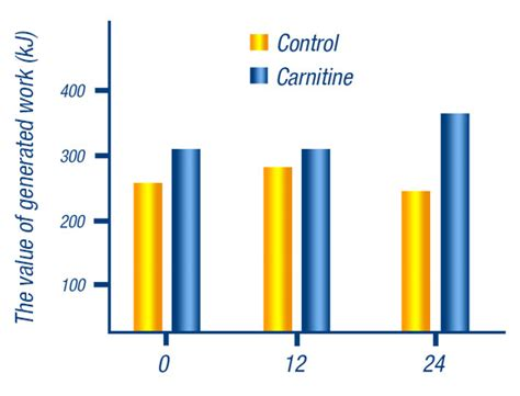 l carnitine carbohydrates l carnitine 4000 power 11street malaysia nutrition