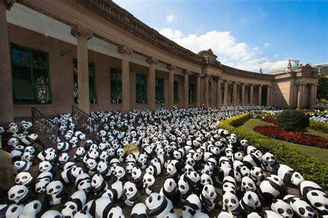 Design And Build Procurement Hong Kong | 1 600 papier mache pandas to pop up at hong kong landmarks