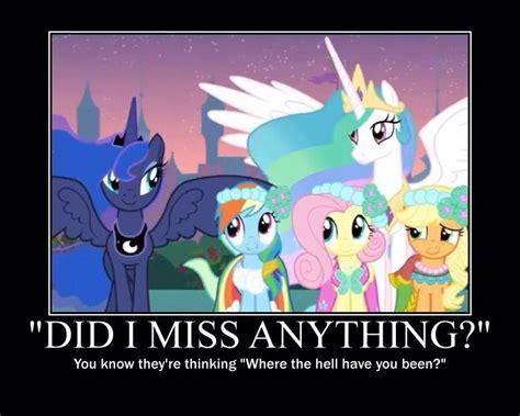 Luna Meme - my book of randomness princess luna meme 2 wattpad