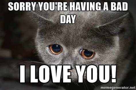 Bad Day Meme - sorry you re having a bad day i love you sadcat meme