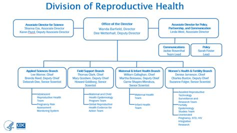 organization pattern of primary health centre organizational chart about us reproductive health cdc