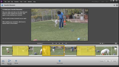 tutorial adobe premiere elements 14 up and running with premiere elements 14