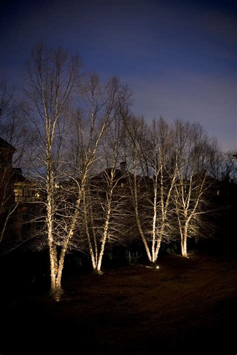 22 Best Landscape Lighting Images On Pinterest Landscape Advantage Landscape Lighting
