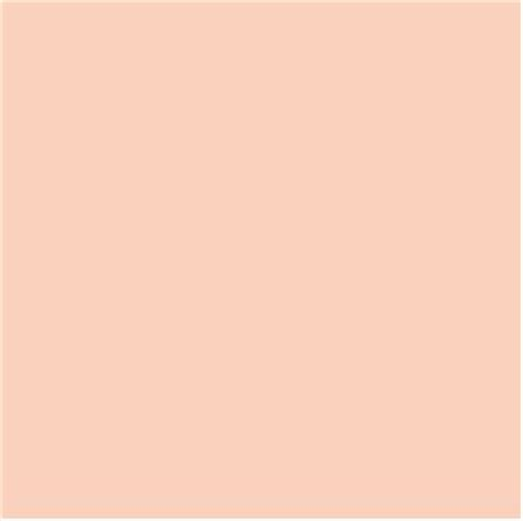 What Does Light Colored by Pantone Pale Pastels