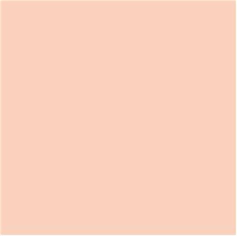 peach pantone pantone pale peach pastels pinterest peaches